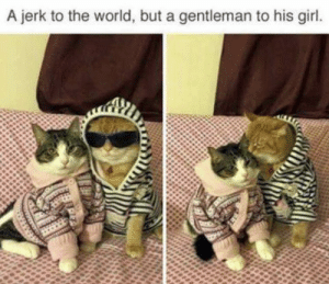 Memes, Girl, and World: A jerk to the world, but a gentleman to his girl. https://t.co/HciTe4UkHp