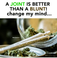 Weed, Marijuana, and Change: A JOINT IS BETTER  THAN A BLUNT!  change my mind.  ..  @marijuana.tv 🤔 @highAF.tv