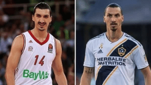 "A journalist asked Bosnian basketball player Nihad Đedović if he was related to Zlatan Ibrahimović:   🗣 Đedović said: ""No, my father has never been to Sweden."" 🇸🇪  🗣 Zlatan replied: ""But my father has been to Bosnia."" 🇧🇦  Brilliant! 👏😂🤣 https://t.co/yGdXaZLqHB: A journalist asked Bosnian basketball player Nihad Đedović if he was related to Zlatan Ibrahimović:   🗣 Đedović said: ""No, my father has never been to Sweden."" 🇸🇪  🗣 Zlatan replied: ""But my father has been to Bosnia."" 🇧🇦  Brilliant! 👏😂🤣 https://t.co/yGdXaZLqHB"
