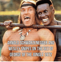 Arnold Schwarzenegger, Dank, and Facebook: a l  ARNOLD SCHWARZENEGGER AND  WESLEY SNIPES ON THE SET OF  GEORGE OF THE JUNGLE 1972 1️⃣ Facebook: menofarmstactical 💻Website: www.wearemoa.com 🎞IG: MAIN PAGE 🔞 @men_of_arms Or our PG page @moa_tactical pewpew apparel graphic edc dank savage memes cerakote cerakotethatshit men_of_arms lansing puremichigan shooter gear firearms instagood love gunpics photooftheday swag phworthy gunporn joinordie liberty military rifle pistol runguns