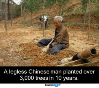 Memes, True, and Chinese: A legless Chinese man planted over  3,000 trees in 10 years  Explore A true hero <3