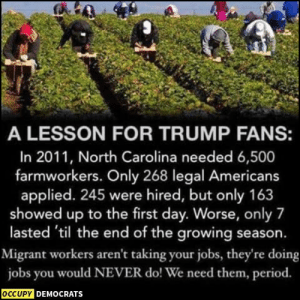 Exactly!  Sourced at the Washington Post: https://wapo.st/2U41kWJ Follow Occupy Democrats for more.: A LESSON FOR TRUMP FANS:  In 2011, North Carolina needed 6,500  farmworkers. Only 268 legal Americans  applied. 245 were hired, but only 163  showed up to the first day. Worse, only 7  lasted 'til the end of the growing season.  Migrant workers aren't taking your jobs, they're doing  jobs you would NEVER do! We need them, period.  OCCUPY DEMOCRATS Exactly!  Sourced at the Washington Post: https://wapo.st/2U41kWJ Follow Occupy Democrats for more.