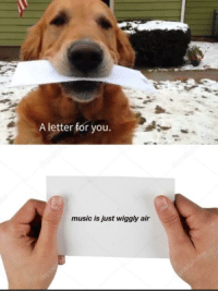 """Music, Invest, and Air: A letter for you  music is just wiggly air <p>Found through an external source. Invest? via /r/MemeEconomy <a href=""""https://ift.tt/2KoGqcK"""">https://ift.tt/2KoGqcK</a></p>"""