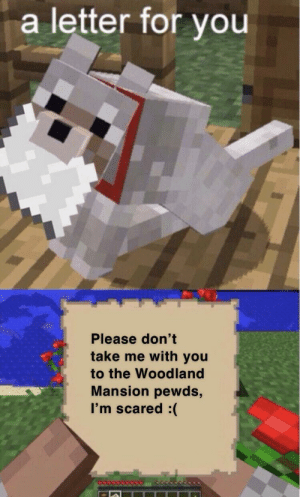 Woodland, You, and For: a letter for you  Please don't  take me with you  to the Woodland  Mansion pewds,  I'm scared just don't do it pewds