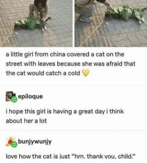 "Love, Memes, and China: a little girl from china covered a cat on the  street with leaves because she was afraid that  the cat would catch a cold  epiloque  i hope this girl is having a great day i think  about her a lot  bunjywunjy  love how the cat is iust ""hm. thank you, child."" https://t.co/uk0Q0bcViM"