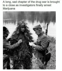 Marijuana, Sad, and Drug: A long, sad chapter of the drug war is brought  to a close as investigators finally arrest  Marijuana Damn!