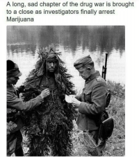 Drugs, Marijuana, and Sad: A long, sad chapter of the drug war is brought  to a close as investigators finally arrest  Marijuana Nixon begins the war on drugs, 1971