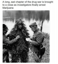 Weed, Marijuana, and Dank Memes: A long, sad chapter of the drug war is brought  to a close as investigators finally arrest  Marijuana I hear you could die from weed i hope that's not true my friend tried it once a few times he said he didn't die but you never know he be lying I don't trust most people probably because I was lied to my whole life about certain things, all good I think weed could be good for some people