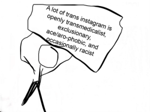 Instagram, Racist, and Ace: A lot of trans instagram is  openly transmedicalist,  exclusionary  ace/aro-phobic, and  Occasionally racist !!! A message to any trans people using instagram !!!