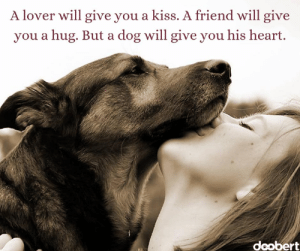 Memes, Heart, and Kiss: A lover will give you a kiss. A friend will give  you a hug. But a dog will give you his heart.  deobert 🐾