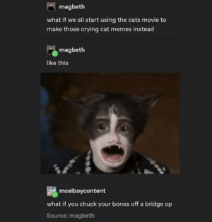 Thanks I hate Cats movie meme templates: A magbeth  what if we all start using the cats movie to  make those crying cat memes instead  magbeth  like this  mcelboycontent  what if you chuck your bones off a bridge op  Source: magbeth Thanks I hate Cats movie meme templates