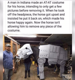 upset: A man in Indiana made an AT-AT costume  for his horse, intending to only get a few  pictures before removing it. When he took  off the headpiece, the horse got upset and  insisted he put it back on, which made his  horse happy again. Now the horse isn't  allowing him to remove any piece of the  costume.