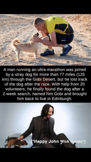 I'm not crying: A man running an ultra-marathon was joined  by a stray dog for more than 77 miles (125  km) through the Gobi Desert, but he lost track  of the dog after the race. With help from 20  volunteers, he finally found the dog after a  2-week search, named him Gobi and brought  him back to live in Edinburgh.  Happy John Wick noises*] I'm not crying