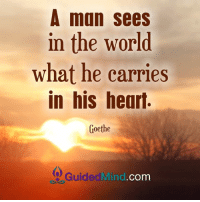 Memes, 🤖, and Carrie: A man sees  in the World  what he carries  in his heart.  Goethe  Guided Mind  Com <3 Guided Mind  .