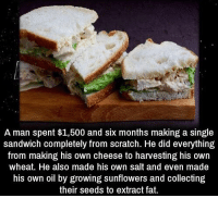 https://t.co/MzaOzRSibu: A man spent $1,500 and six months making a single  sandwich completely from scratch. He did everything  from making his own cheese to harvesting his own  wheat. He also made his own salt and even made  his own oil by growing sunflowers and collecting  their seeds to extract fat. https://t.co/MzaOzRSibu