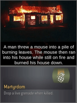 Pro-gamer move: A man threw a mouse into a pile of  burning leaves. The mouse then ran  into his house while still on fire and  burned his house down.  Martyrdom  Drop a live grenade when killed. Pro-gamer move