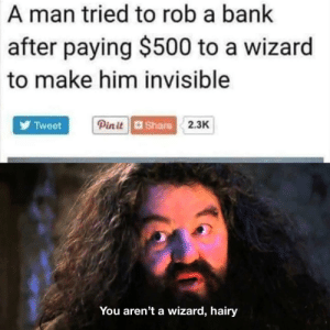 Florida man, is that you?: A man tried to rob a bank  after paying $500 to a wizard  to make him invisible  Pin itShare2.3K  Tweet  You aren't a wizard, hairy Florida man, is that you?
