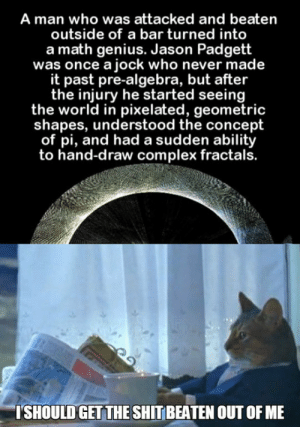 srsfunny:  This Will Helphttp://srsfunny.tumblr.com/: A man who was attacked and beaten  outside of a bar turned into  a math genius. Jason Padgett  was once a jock who never made  it past pre-algebra, but after  the injury he started seeing  the world in pixelated, geometric  shapes, understood the concept  of pi, and had a sudden ability  to hand-draw complex fractals.  ISHOULD GET THE SHIT BEATEN OUT OF ME srsfunny:  This Will Helphttp://srsfunny.tumblr.com/
