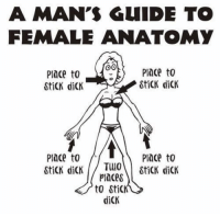 Dick, Dank Memes, and Sti: A MAN'S GUIDE TO  FEMALE ANATOMY  Place to  StiCK dicK  lnce to  SticK dicK  Place to  Place to  Places  to Sti  diCK Hahaha.