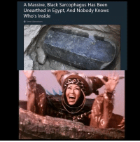 Funny, Black, and Free: A Massive, Black Sarcophagus Has Been  Unearthed in Egypt, And Nobody Knows  Who's Inside Ahh! After 10,000 years I'm free!