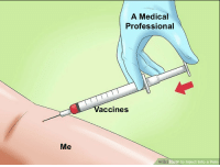 The good stuff: A Medical  Professional  accines  Me  wiki  How to Inject Into a Vein The good stuff