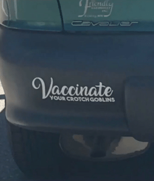 A message for the anti-vax: A message for the anti-vax