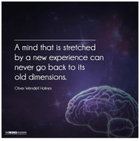 Flex those muscles!: A mind that is stretched  by a new experience can  never go back to its  old dimensions.  Oliver Wendell Holmes  THE MIND  UNLEASHED Flex those muscles!