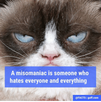 Memes, Contempt, and 🤖: A misomaniac is someone who  hates everyone and everything  @FACTS I guff.com A person who values nothing and holds almost everything in contempt.🤔