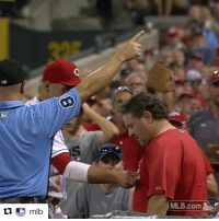 Baseball, Mlb, and Sports: A  MLB.com Joey Votto gets upset at a fan & grabs his shirt for interfering with a foul ball. Later he apologizes and gives him a signed baseball. The power of sports 💯. (via @mlb)