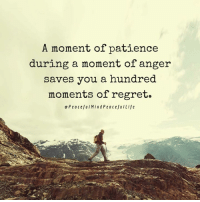 Memes, Regret, and Patience: A moment of patience  during a moment of anger  saves you a hundred  moments of regret.  e PeacefuIMindPeacefulLife