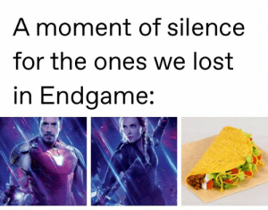 : A moment of silence  for the ones we lost  in Endgame: