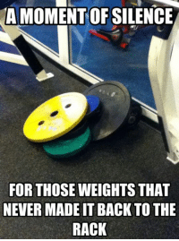 A moment of silence.  Gym Memes: A MOMENT OFSILENCE  FOR THOSE WEIGHTS THAT  NEVER MADEITBACK TO THE  RACK A moment of silence.  Gym Memes