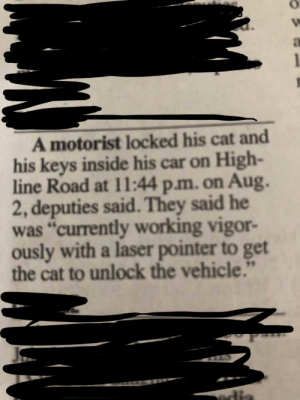 "Sometimes You Have To Improvise: A motorist locked his cat and  his keys inside his car on High-  line Road at 11:44 p.m. on Aug.  2, deputies said. They said he  was ""currently working vigor-  ously with a laser pointer to get  the cat to unlock the vehicle.""  edia Sometimes You Have To Improvise"