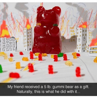 Memes, Bear, and 🤖: a  My friend received a 5 lb. gummi bear as a gift.  Naturally, this is what he did with it. THE GUMMYPOCYPSE!