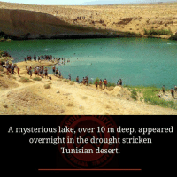 Strickened: A mysterious lake, over 10 m deep, appeared  overnight in the drought stricken  Tunisian desert.