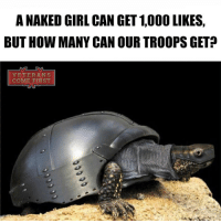Memes, Naked Girl, and 🤖: A NAKED GIRL CAN GET 1,000 LIKES.  BUT HOW MANY CAN OUR TROOPSGET  VETERANS  COME FIRST Let's see how many likes can our military turtle get veteranscomefirst veterans_us Veterans Usveterans veteransUSA SupportVeterans Politics USA America Patriots Gratitude HonorVets thankvets supportourtroops semperfi USMC USCG USAF Navy Army military godblessourmilitary soldier holdthegovernmentaccountable RememberEveryoneDeployed Usflag StarsandStripes