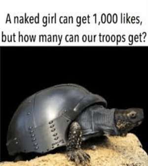 A naked girl can get 1,000 likes, but how many can our troops get?: A naked girl can get 1,000 likes, but how many can our troops get?