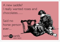 Memes, 🤖, and Som: A new saddle?  I really wanted roses and  chocolates  Said no  horse person  ever.  ee cards  Som  user card 😏👍