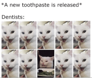 Tumblr, Blog, and Com: *A new toothpaste is released  Dentists: awesomesthesia:  9/10 dentists recommend!