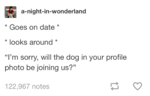 """Omg, Sorry, and Tumblr: a-night-in-wonderland  * Goes on date*  * looks around  """"l'm sorry, will the dog in your profile  photo be joining us?""""  122,967 notes Asking The Important Questionsomg-humor.tumblr.com"""