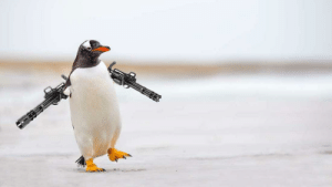 a penguin but its arms are miniguns whats next?: a penguin but its arms are miniguns whats next?