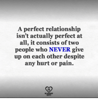 relationship quotes: A perfect relationship  isn't actually perfect at  all, it consists of two  people who NEVER give  up on each other despite  any hurt or pain.  RO  RELATIONSHIP  QUOTES