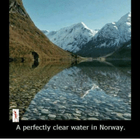 Memes, Norway, and 🤖: A perfectly clear water in Norway.