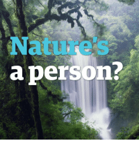 Memes, New Zealand, and Nationalism: a person? A national park in New Zealand has been granted legal personhood, meaning nobody owns it. The park has the same rights and powers as a citizen.