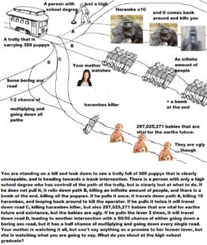 Ass, Dank, and Future: A person with  school degre  ust a hi  Harambe x10  and it comes back  around and kills you  A trolly that is  carrying 300 puppys  An infinite  amount of  Your mother  watches  eople  Some boring  road  1/2 chance  + a bomb  at the end  harambes killer  multiplying and  going down all  aths  297,025,271 babies that are  vital for the earths future.  They are ugly  thoug  You are standing on a hill and look down to see a trolly full of 300 puppys that is clearly  unstopable, and is heading towards a track intersection. There is a person with only a high  school degree who has controll of the path of the trolly, but is clearly lost at what to do.If  he does not pull it, it rolls down path B, killing an inifinite amount of people, and there is a  bomb at the end, killing all the puppies. If he pulls it once, it travels down path A, killing 10  harambes, and looping back around to kill the operator. If he pulls it twice it will travel  down road C, killing harambes killer, but also 297,025,271 babies that are vital for earths  future and existance, but the babies are ugly. If he pulls the lever 3 times, it will travel  down road D, leading to another intersection with a 50/50 chance of either going down a  boring ass road, but it has a half chance of multiplying and going down every single road.  Your mother is watching it all, but can't say anything as a promise to her former lover, but  she is watching what you are going to say. What do you shout at the high school  graduate? Meirl by Martin21 MORE MEMES