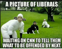 cnn.com, Memes, and Waiting...: A PICTURE OF LIBERALS  WAITING ON CNN TO TELL THEM  WHAT TO BE OFFENDED BY NEXT