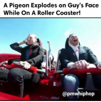 But buddy still had a good time though! - WATCH NOW AT PMWHIPHOP.COM LINK IN BIO @pmwhiphop: A Pigeon Explodes on Guy's Face  While On A Roller Coaster!  @pmwhiphop But buddy still had a good time though! - WATCH NOW AT PMWHIPHOP.COM LINK IN BIO @pmwhiphop