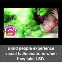 Facts, Memes, and Experience: a Point  Blind people experience  visual hallucinations when  they take LSD. Follow our page for more Facts 😇 Don't forget to tag your friends 💖