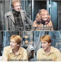⠀⠀⠀⠀↡ Favourite Weasley? + Followers; 96.1k + — @TheLostProphecy: A prefect! That's everyone in the famiy  THE OST  pe ROPHECY  What are Fred and  I, next door neighbours ⠀⠀⠀⠀↡ Favourite Weasley? + Followers; 96.1k + — @TheLostProphecy
