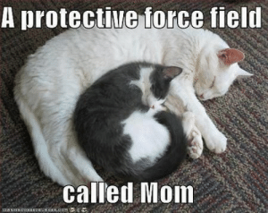 awesomacious:  Mothers are awesome.: A protective force field  called Mom awesomacious:  Mothers are awesome.